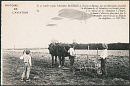 10667524