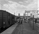10688442