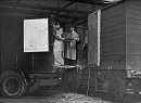 10689555