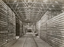 10695088