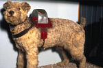 10320014