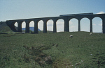 10306823