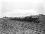 10443969