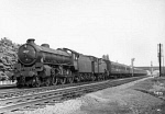 10319773