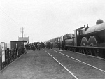 10443981