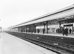 10443982