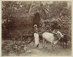 10463886