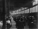 10547006