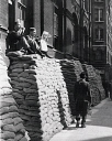 10313636
